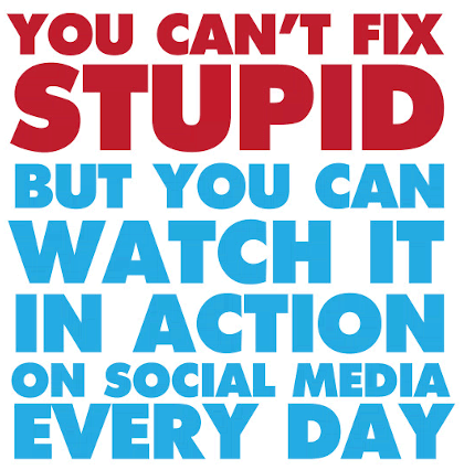 Watch Stupid In Action